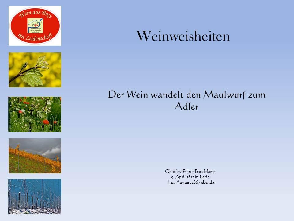 Weinweisheiten1