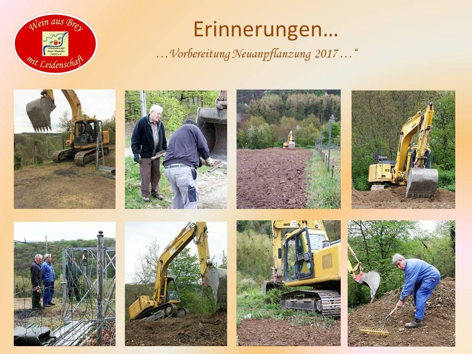 Vorbereitung Neuanpflanzung 2017