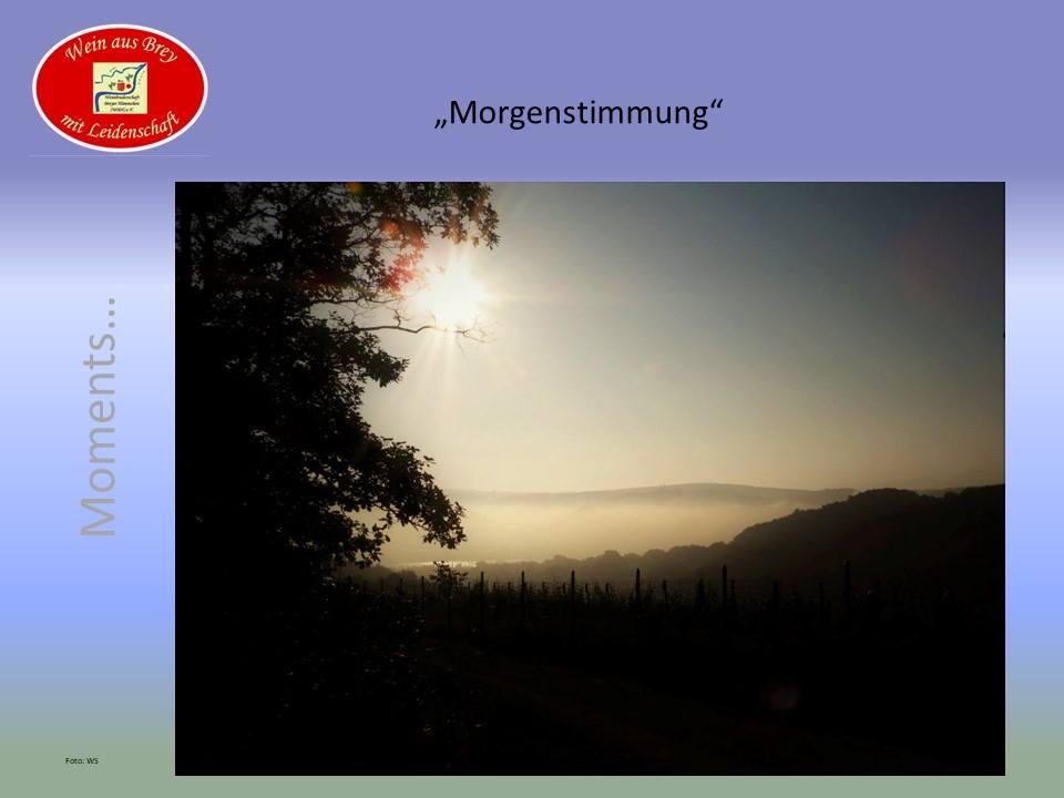 ...Guten Morgen Hämmchen-Land...
