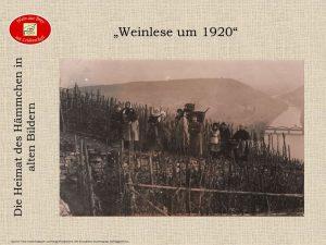 ...Weinlese vor 100 Jahren...